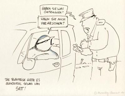 Verkehrskontrolle, den Führerschein bitte…