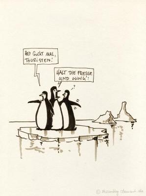 Rüde Pinguine