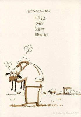 Schafes