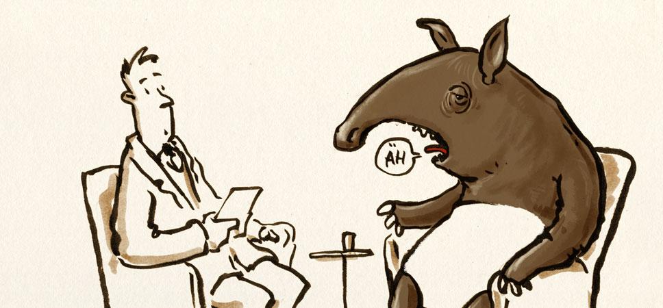 Interview mit einem Tapir