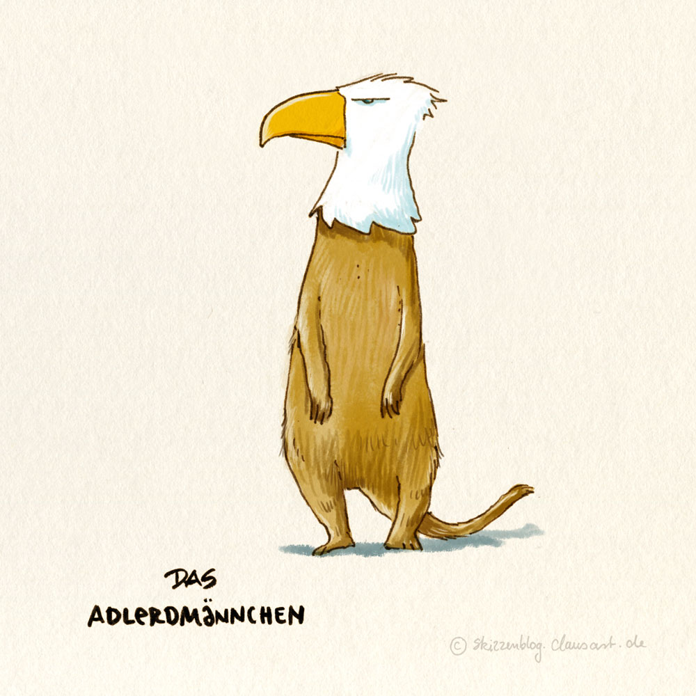 Adlerdmännchen