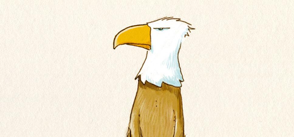 Das Adlerdmännchen