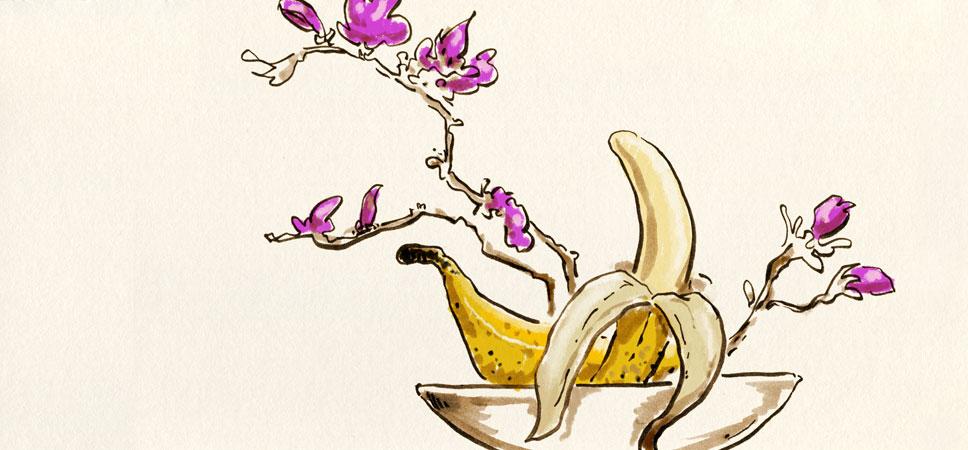Die Kunst eine Banane herzurichten