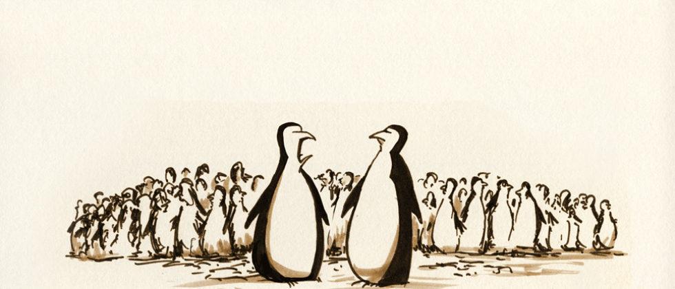 feature_pinguin